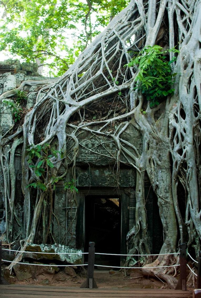 Angkor Kambodža